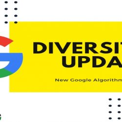 Google Diverse Results Update - Digital Marketers India